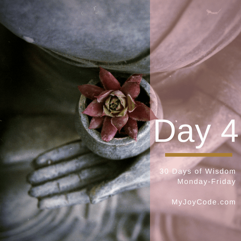 Finding Peace in a Divided World, Day 4 of our 30 Days of Wisdom