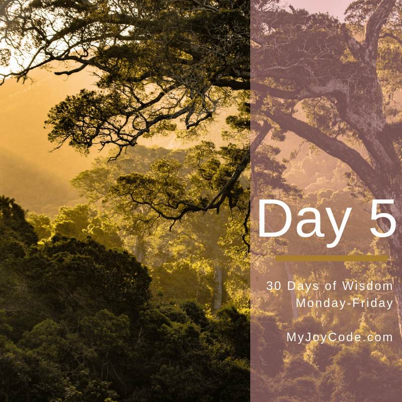 Finding the Wild Wisdom Woman Within, Guided Meditation Practice Day 5