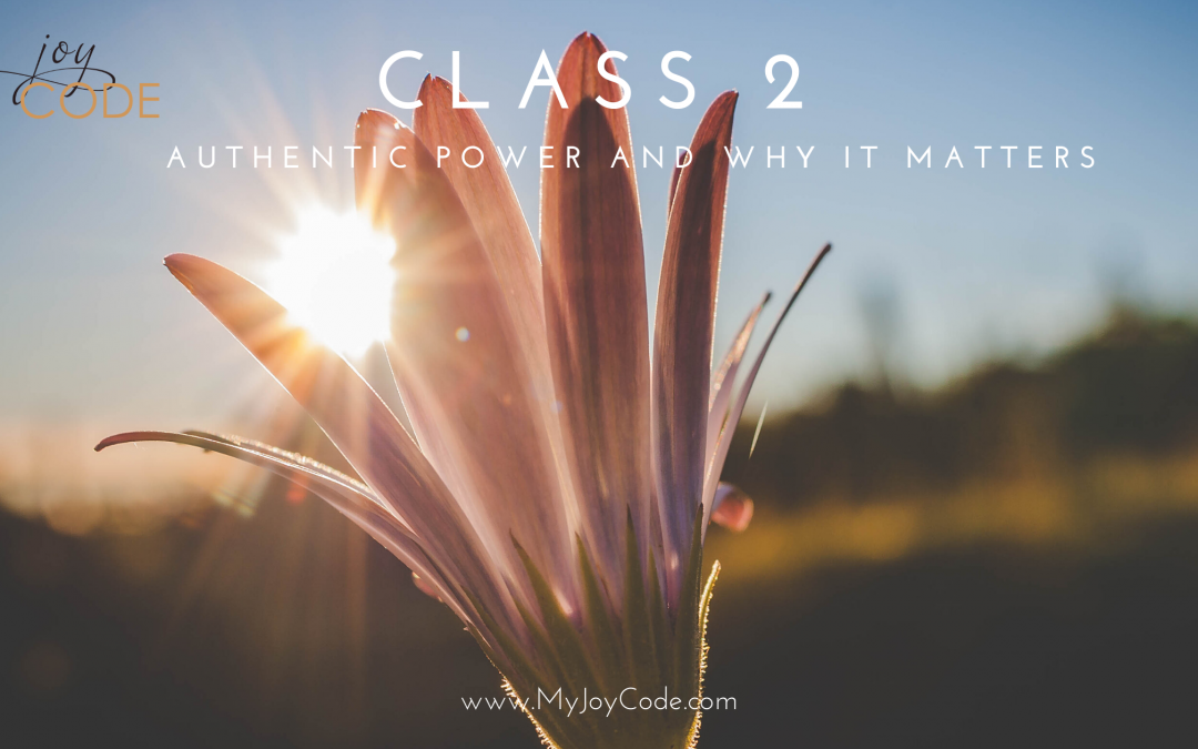 Class 2: Authentic Power and Why It Matters
